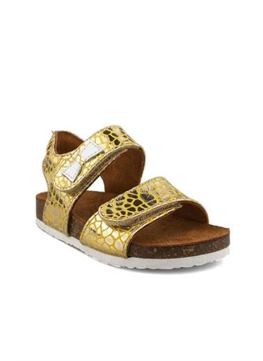 Cicibebe Crocodil Deri Kız Çocuk Sandalet Sarı